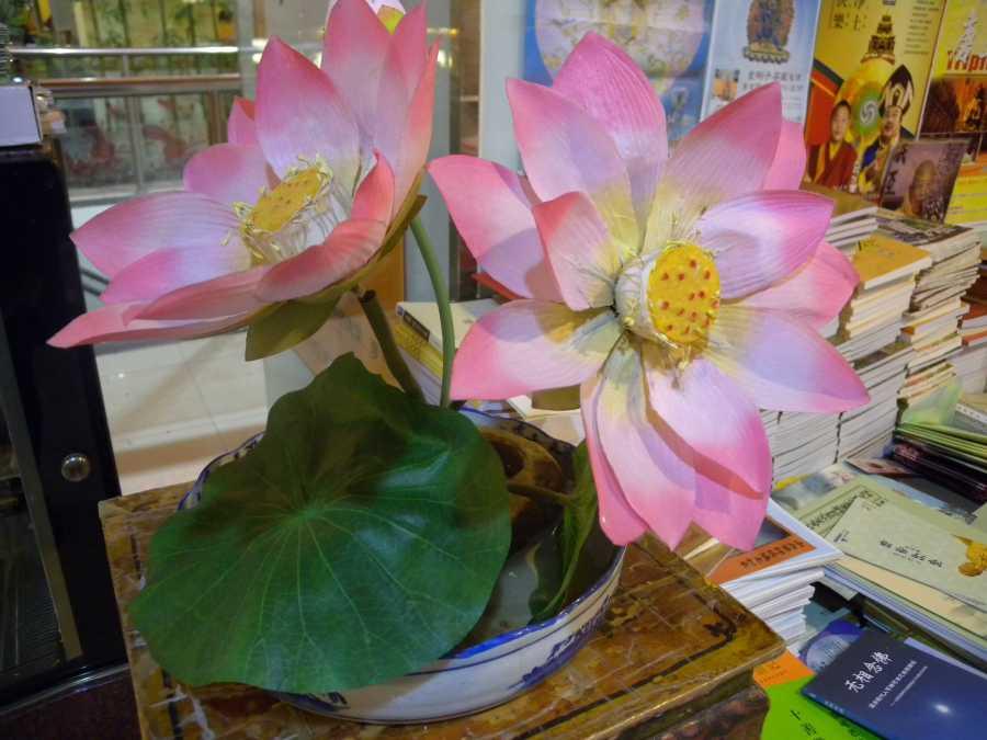 fake lotus