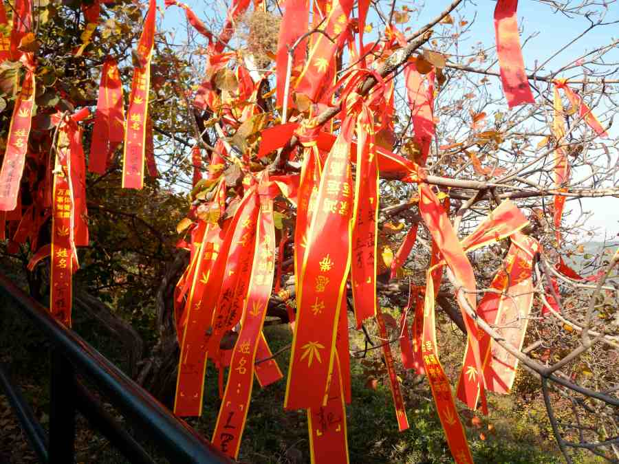 fragrant hill streamers