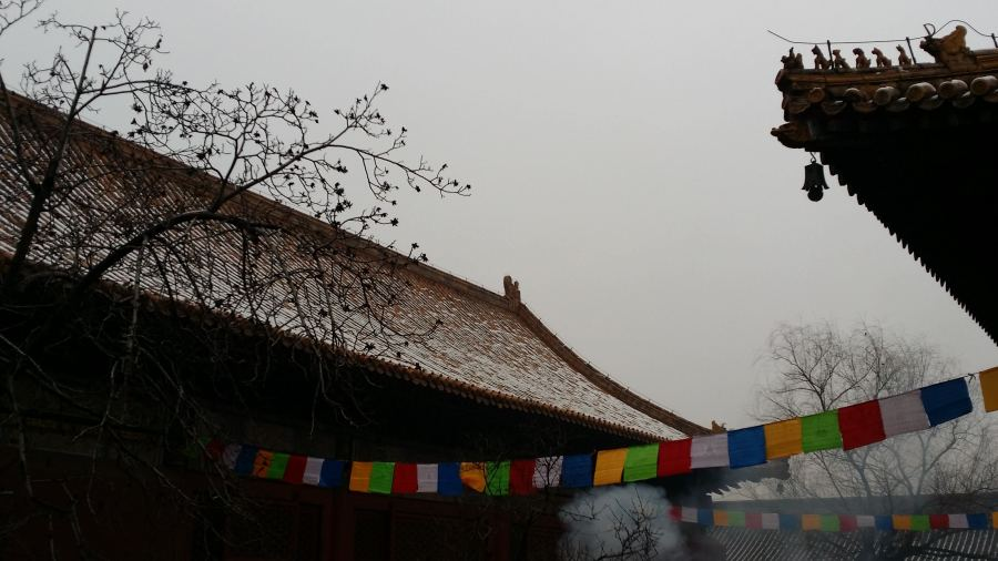 lamma temple flags - the few million people left in Beijing congregated here on New Year's Day